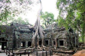 Angkor_TaProhm-3