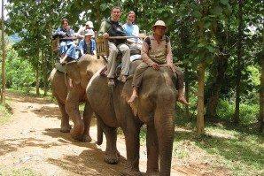 Laos-Elephant-rides
