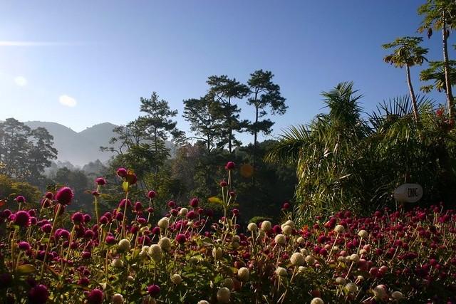 Myanmar kalaw