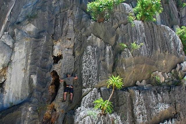Oriental Sails Cruise climbing