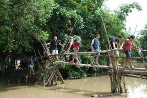 monkey-brigde-in-mekong-delta-tour