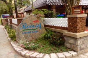 Rocosy resort