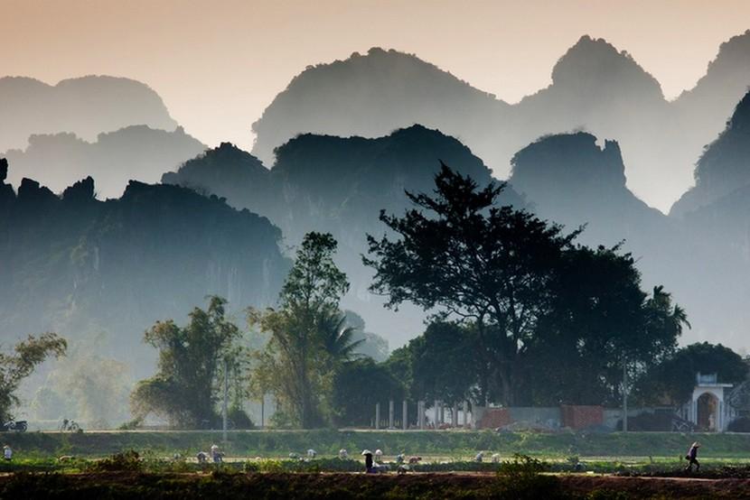 Ninh Binh Rice Fields