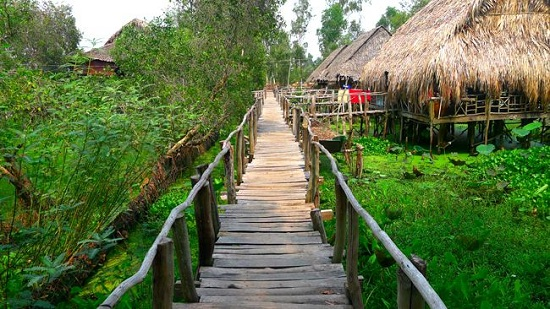 Gao Giong is one of the greatest ecotourism destinations in Mekong Delta