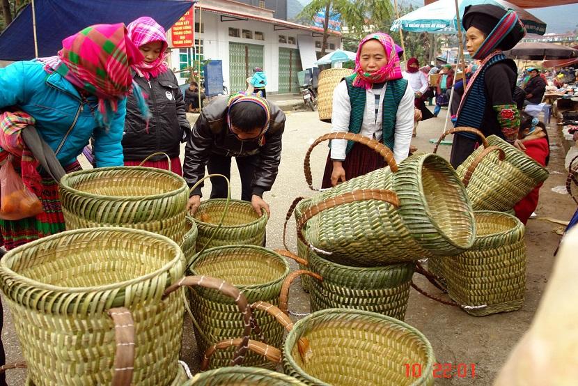 Hoang Su Phi trekking