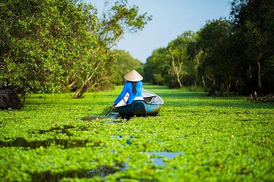 Mekong Delta TraSu