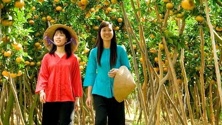 famous fruit orchards in Mekong Delta