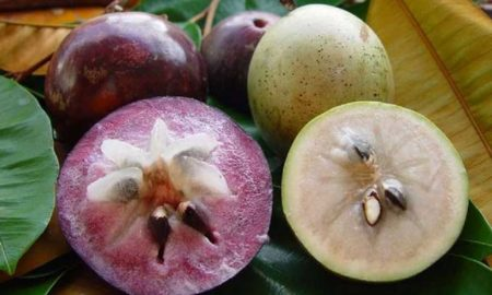 Top 6 strange Vietnamese fruits and how to eat them