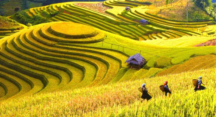 Where to go in September for Vietnam trip: Ha Giang