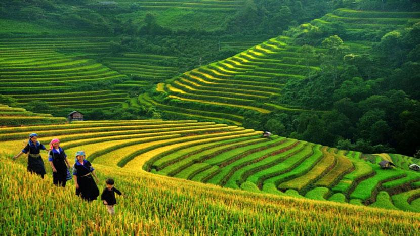 where-to-go-in-september-for-vietnam-trip-3