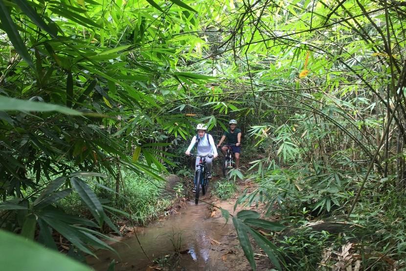 Ma Da forest, Dong Nai province